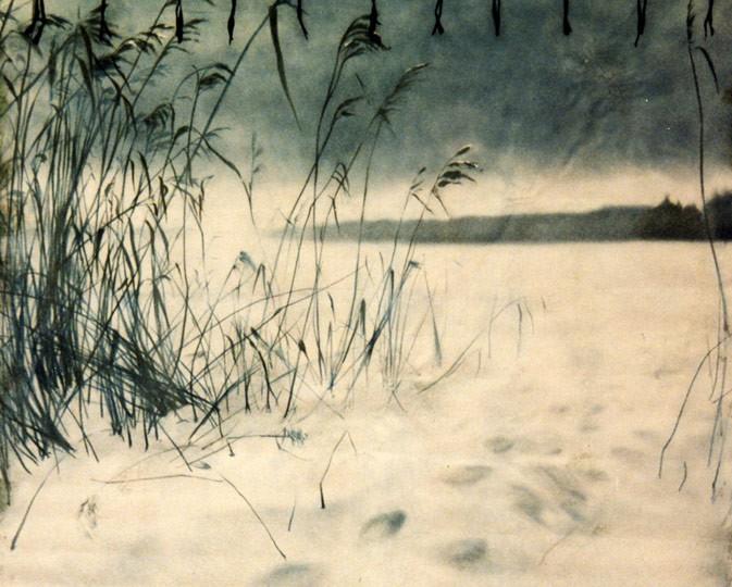 Kwast - Auftragsmalerei - Fotohintergründe